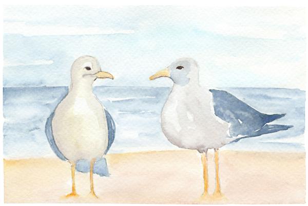 Catherine Atkinson - Seagulls