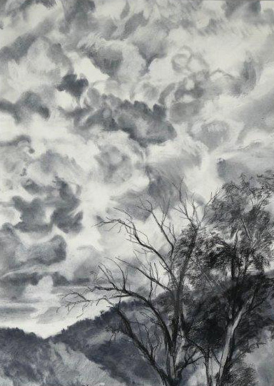 Robyn Biviano - Bylong Valley Sky