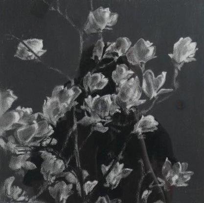 Robyn Biviano - Dark Magnolia