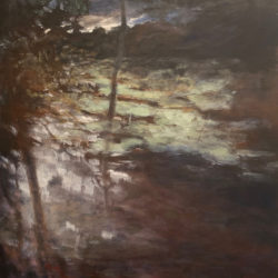 Tony Hooke - Darkening by the Creek