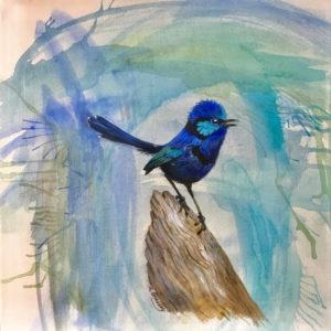 Dianne Bradley - Blue Wren on Branch