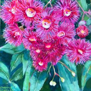 Dianne Bradley - Flowering Gum