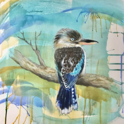 Dianne Bradley - #7 Kookaburra on Branch