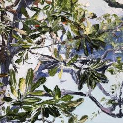 Miranda Summers - Banksia Blue