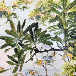 Miranda Summers - Banksia My Banksia