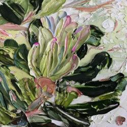 Miranda Summers - Fat Banksia No.1